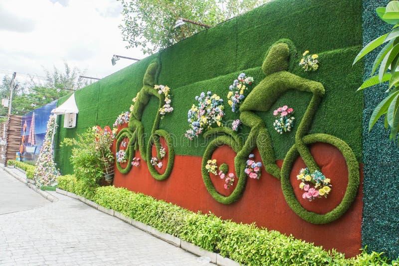 Huahin/Thailand - Februari 17 2019: verfraaide groene klimplanten op de toevluchtmuur royalty-vrije stock afbeelding