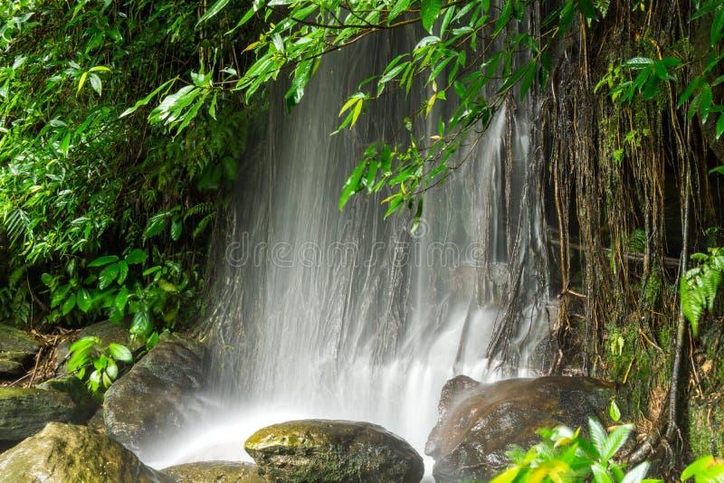 Huai Huai Waterfall Hiking bij Muang-District, Sakon Nakhon Provi royalty-vrije stock foto
