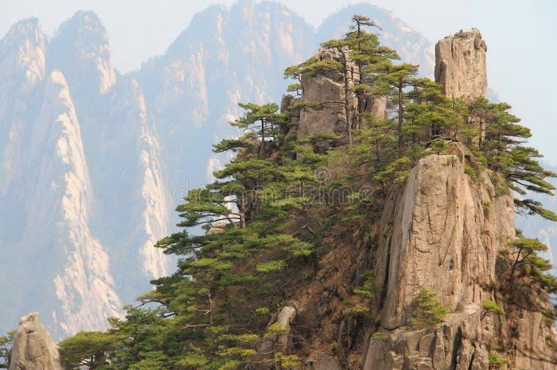 Huangshan-Bergspitzen, China stockbild