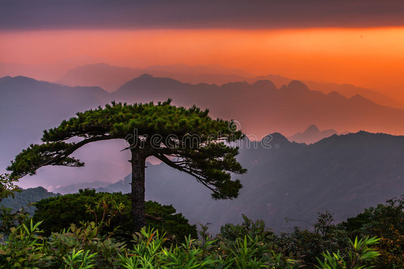 Huangshan mountain in China stock photos