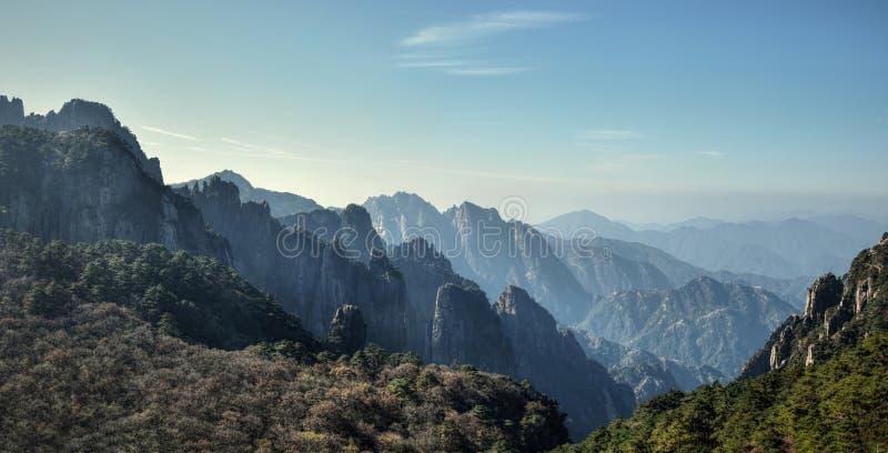 Huangshan sosny dorośnięcie od skał w Huangshan, Żółte góry, prowincja anhui, Chiny zdjęcie royalty free