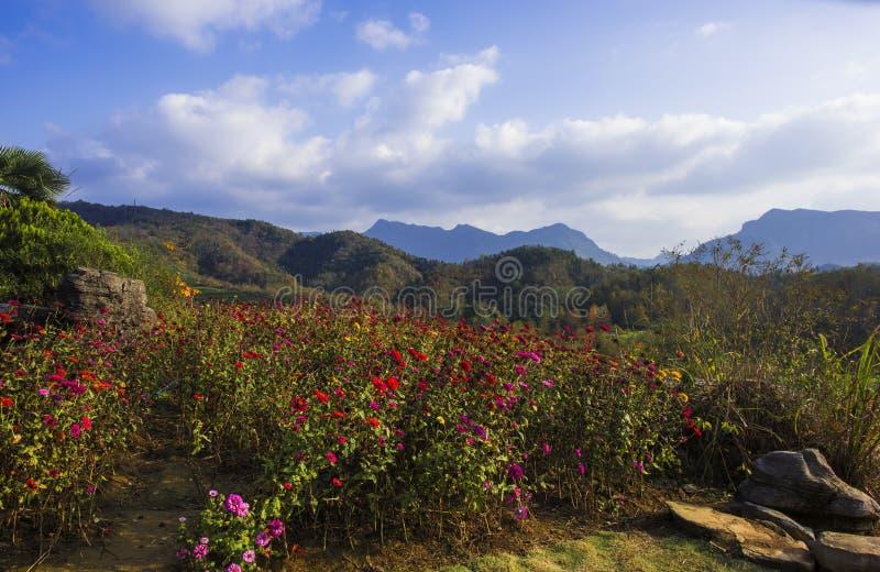 Huangshanberg ten westen van anhuilandschap royalty-vrije stock afbeeldingen
