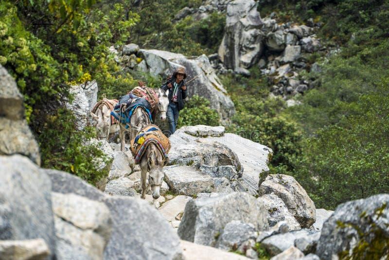 Huaraz Santa Cruz Treking immagini stock libere da diritti