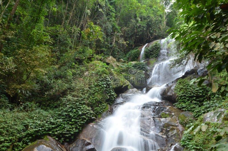 Huay Kaew waterfall royalty free stock photos
