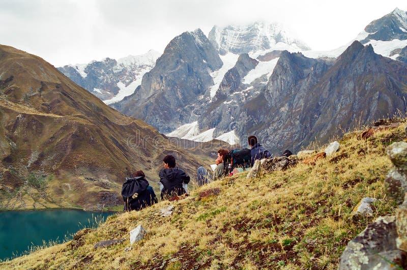 huayhuash秘鲁牛拉车旅行 库存照片