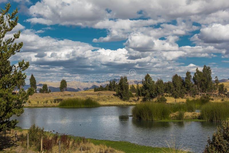 Huayllarqochamoerasland Cuzco Peru royalty-vrije stock afbeelding