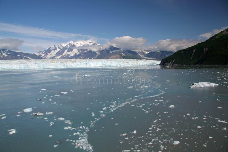 Hubbardgletsjer en Yakutat-Baai, Alaska stock fotografie