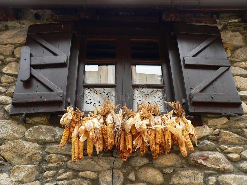Download Hublot de maïs d'épis image stock. Image du épi, espagne - 8671809