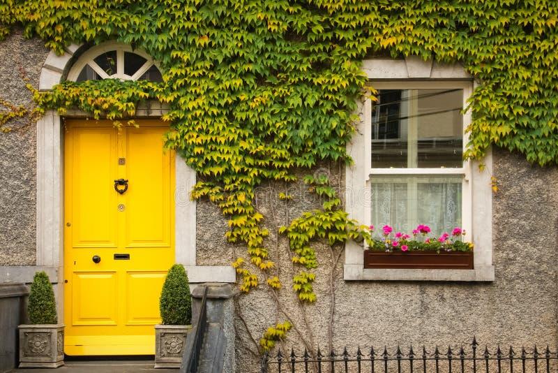Hublot entouré par le lierre Kilkenny l'irlande images stock