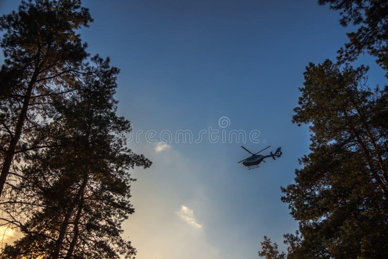 Hubschrauber über Bäumen stockfotos