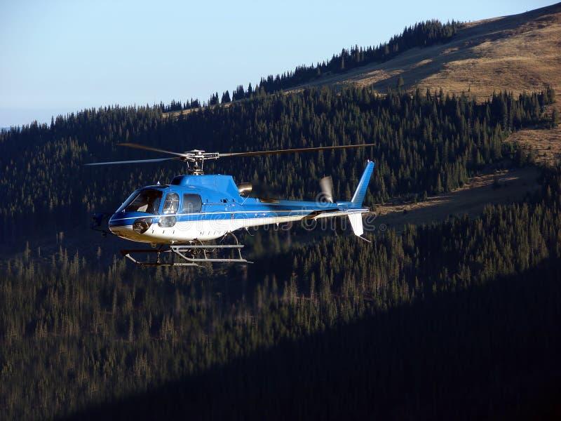Hubschrauber über dem Wald stockbild