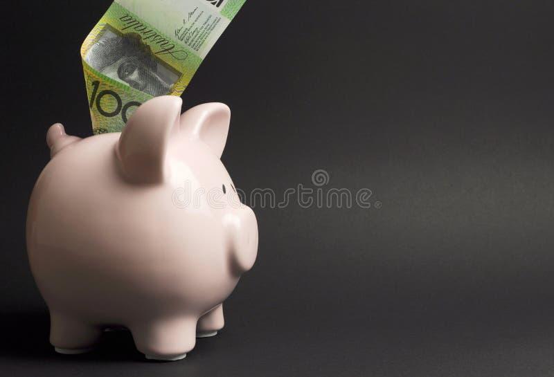 Hucha con el australiano cientos notas del dólar - con el espacio de la copia imágenes de archivo libres de regalías