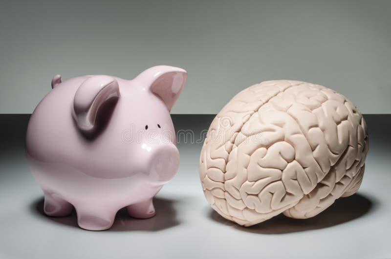 Hucha y cerebro humano fotografía de archivo