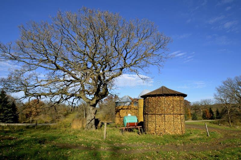 Huches de maïs à une ferme rurale pendant l'automne images libres de droits