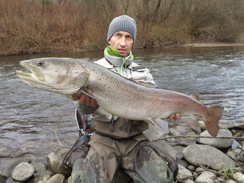 Hucho del salmone del Danubio che pesca in Europa centrale immagine stock libera da diritti