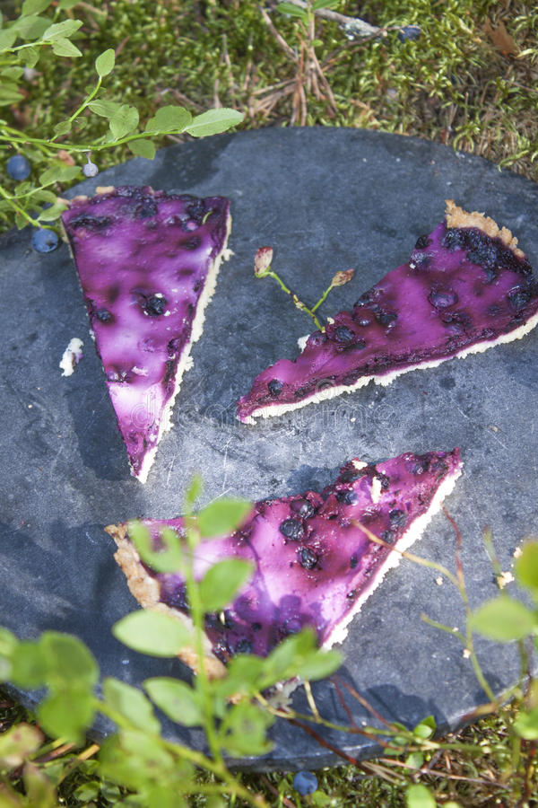 Huckleberry pies. Tree pieces of vaccinium myrtillus, huckleberry pies, on a stone plate, in the forrest stock photo