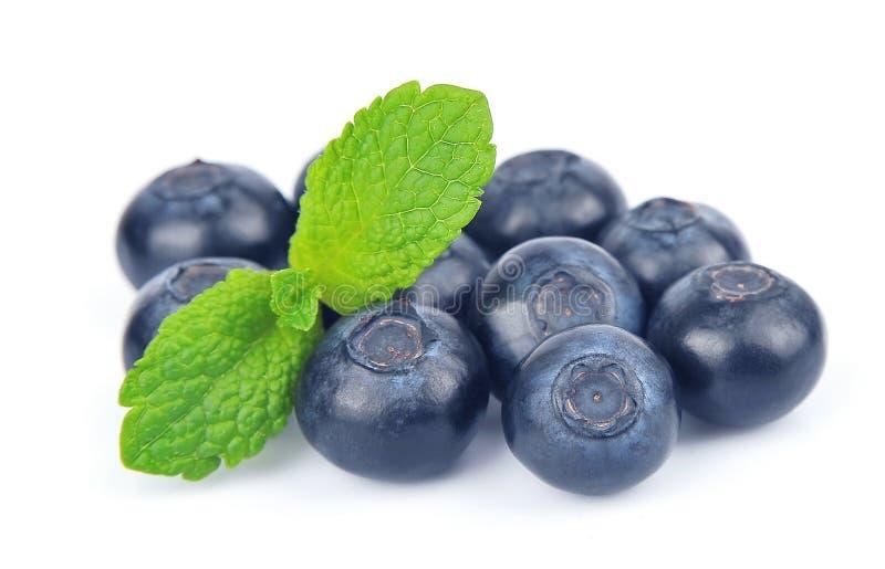 Huckleberry z mennicą zdjęcia stock