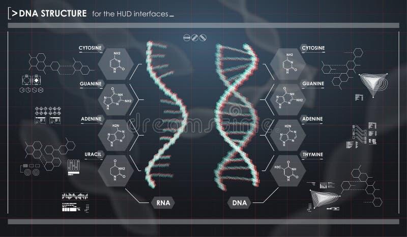 HUD infographic elementy z DNA strukturą Futurystyczny interfejs użytkownika Abstrakcjonistyczna wirtualna grafika ilustracja wektor