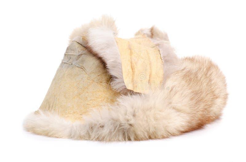 Hudpäls med den arktiska räven royaltyfria foton