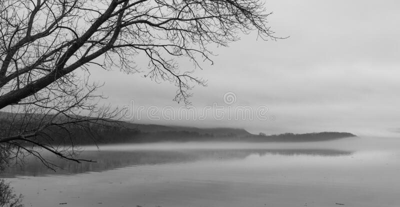 Fog Covered Landscape Reflected in Water stock photo
