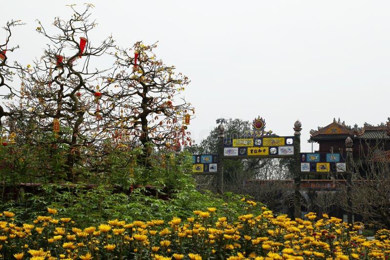 Hue Imperial City Opinión sobre una entrada de la ciudadela con las flores amarillas de crisantemos y los árboles del melocotón imágenes de archivo libres de regalías