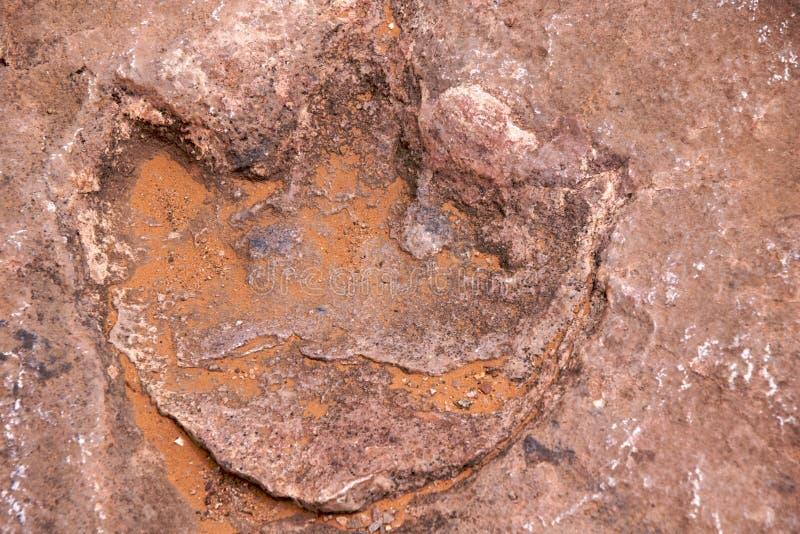 Huella del dinosaurio imagen de archivo