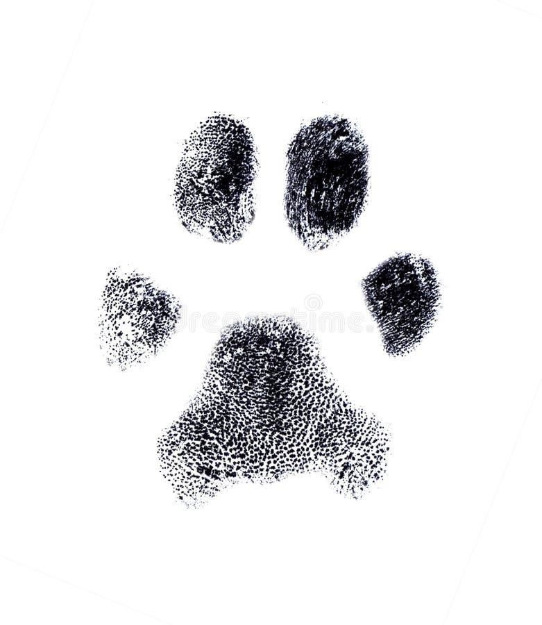 Huella digital del perro ilustración del vector