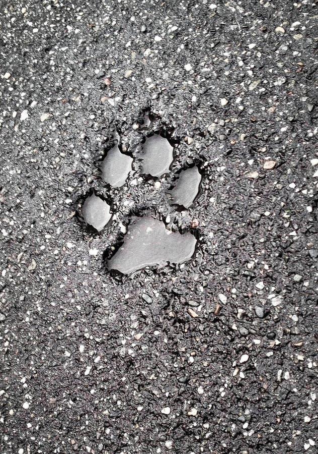 Huella en el asfalto fotografía de archivo libre de regalías