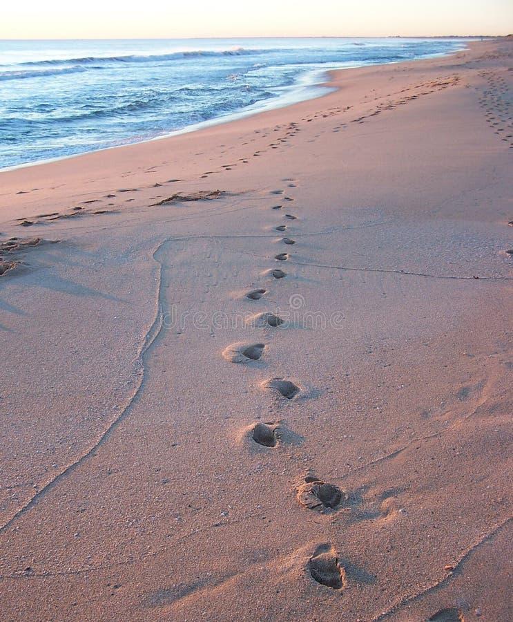 Download Huellas foto de archivo. Imagen de arena, sunset, playa - 190096