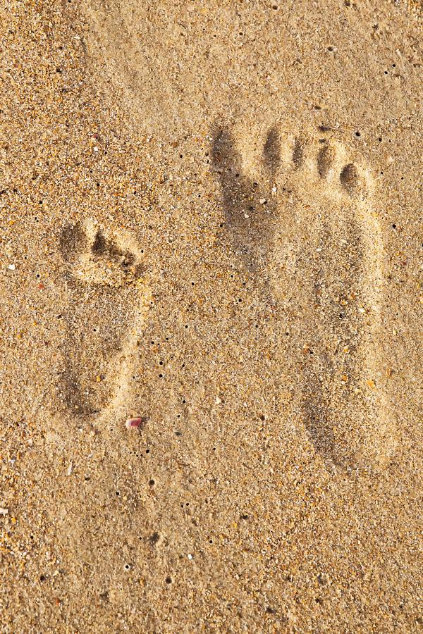 Huellas de la familia en la arena en la playa fotografía de archivo libre de regalías