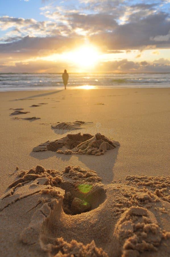 Huellas del hombre solo en la playa Pasos en la arena foto de archivo libre de regalías