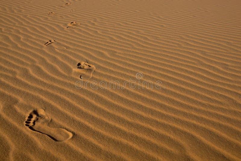 Huellas en arena del desierto imagen de archivo libre de regalías