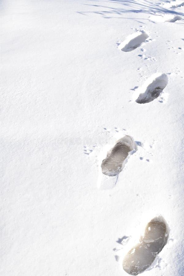 Huellas en la nieve imagenes de archivo