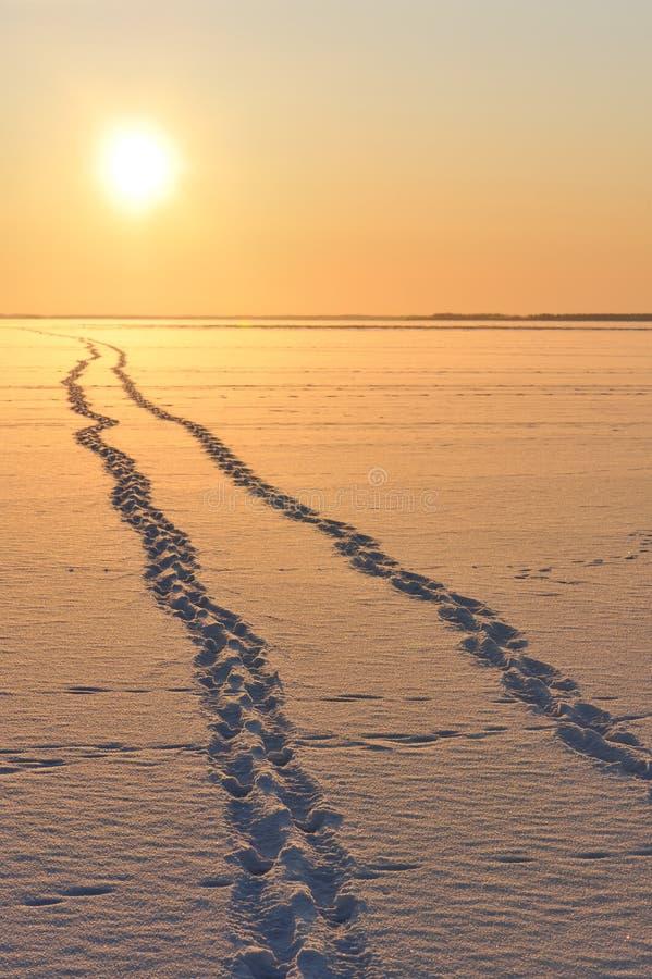 Huellas en la nieve que lleva al horizonte fotos de archivo