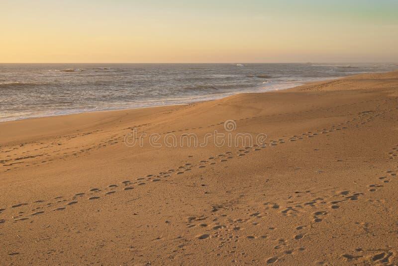 Huellas en la playa vac?a imagenes de archivo