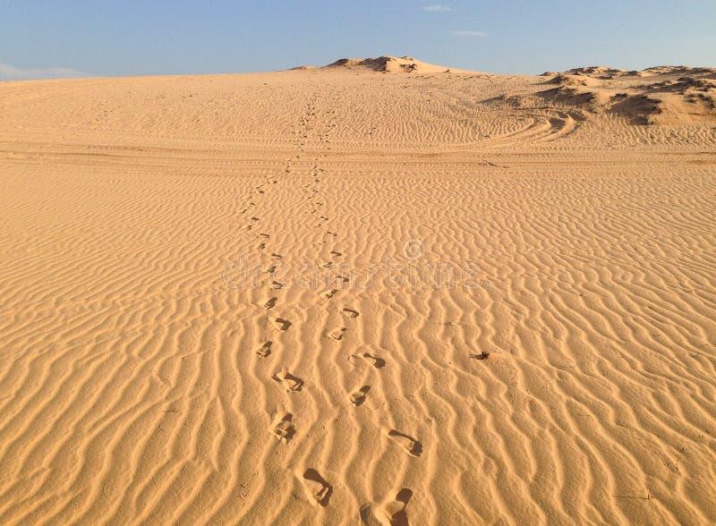 Huellas en las dunas de arena blancas fotos de archivo