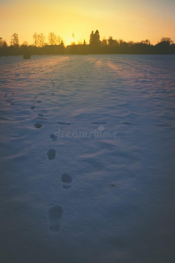 Huellas en una nieve imagen de archivo