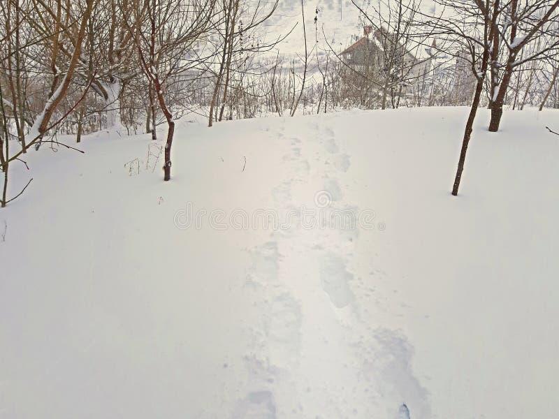Huellas humanas en la nieve profunda Nieve del invierno imágenes de archivo libres de regalías