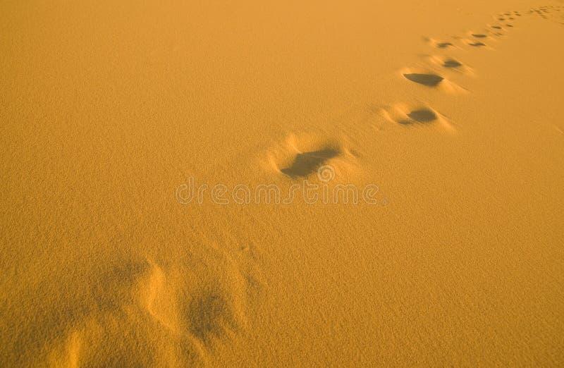 Huellas humanas en la playa fotos de archivo