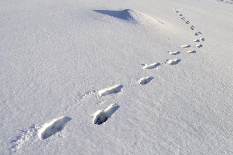 Huellas humanas en nieve profunda fotografía de archivo libre de regalías