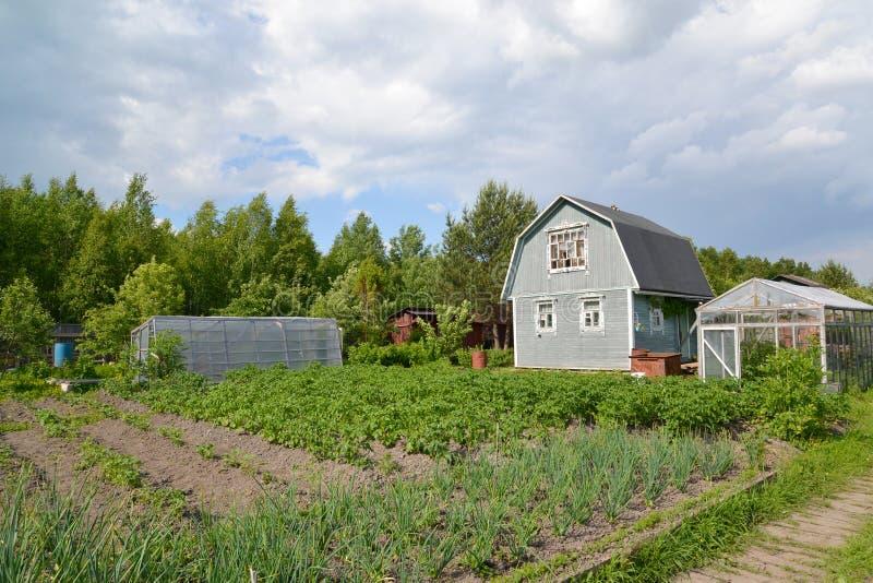 Huerto, casa de campo e invernaderos en una sección del país imagenes de archivo