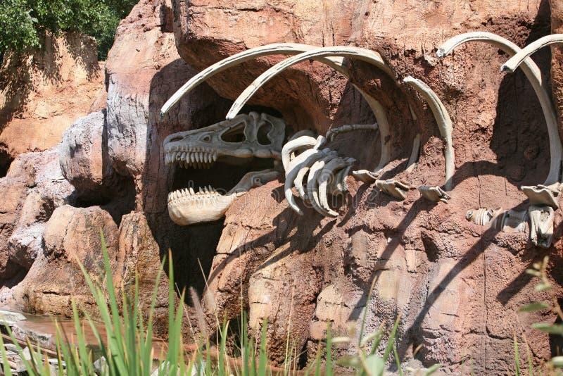 Huesos de dinosaurio foto de archivo