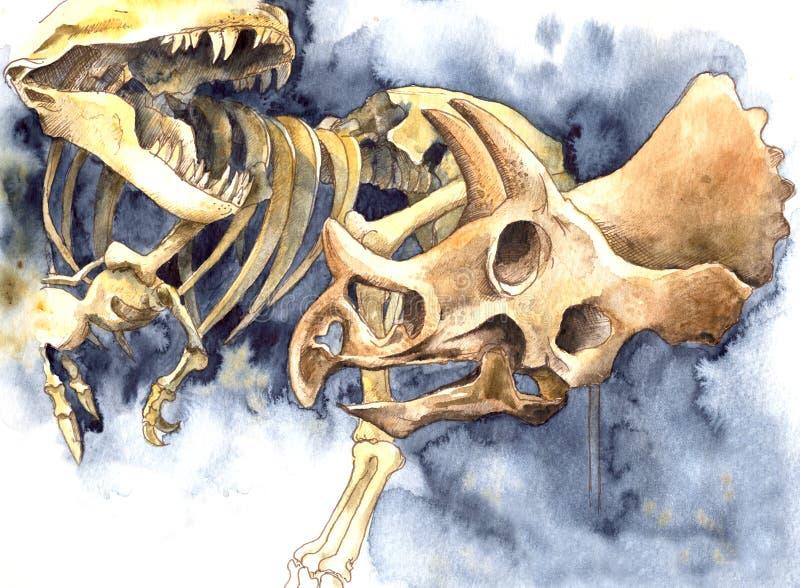 Huesos de dinosaurio del ejemplo de la acuarela del museo foto de archivo libre de regalías