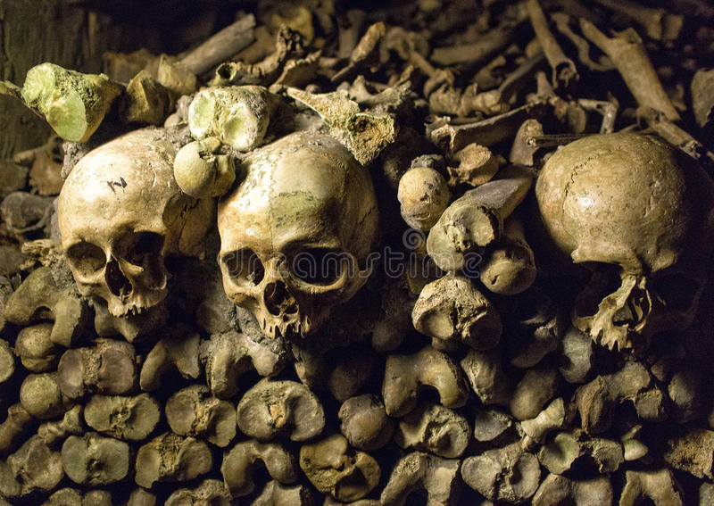 Huesos y cráneos en las catacumbas de París foto de archivo libre de regalías