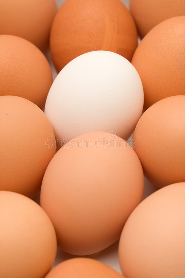 Huevo único
