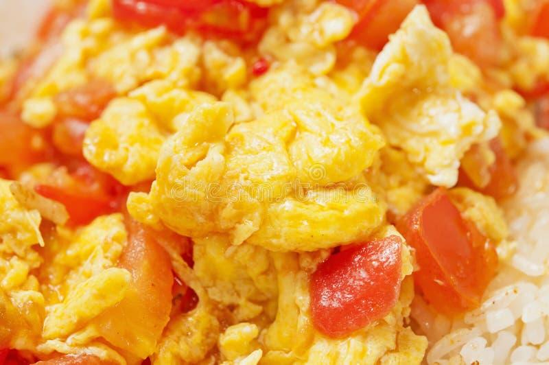 Huevo alimento-Revuelto chino con el tomate imagen de archivo libre de regalías