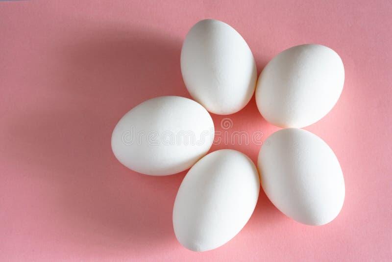 Huevo blanco del pollo en la opinión de top en colores pastel rosada del fondo diseño y decoración para Pascua imágenes de archivo libres de regalías