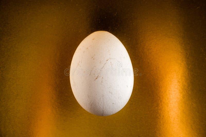 Huevo blanco en fondo del oro imagen de archivo