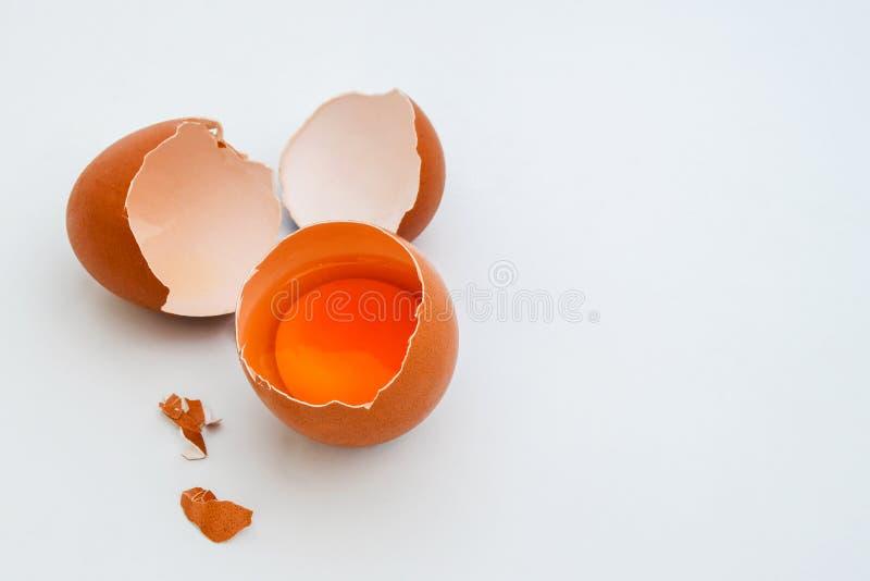 Huevo blanco y yema de huevo en cartón de huevos en el fondo gris claro, visión superior fotografía de archivo libre de regalías