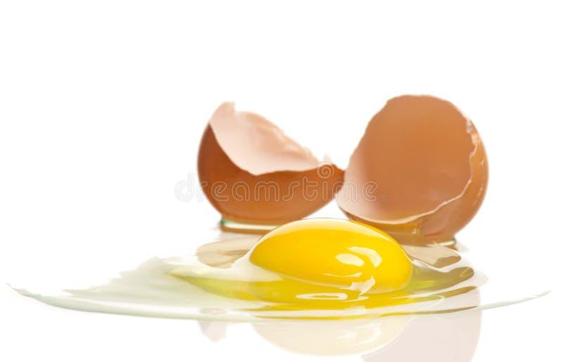 Huevo crudo fotos de archivo
